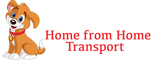 Home from Home Animal Transport