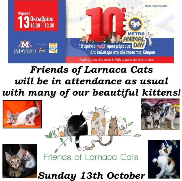 Friends of Larnaca Cats
