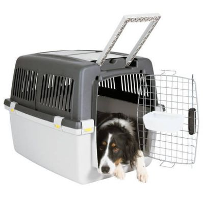 Gulliver Dog or Cat Travel Crate
