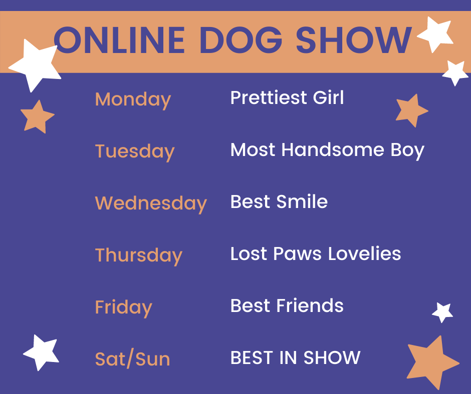 Lost_Paws_Dog_Rescue_and_Rehoming_Online_Dog_Show