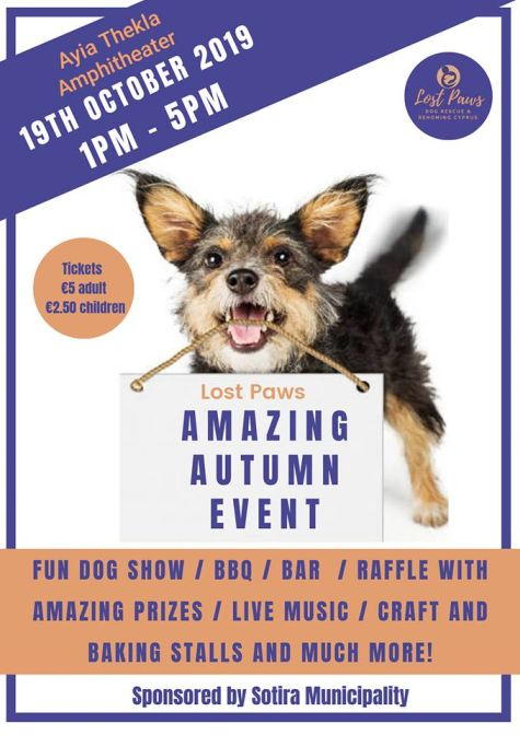 Lost Paws Dog Rescue and Rehoming Event