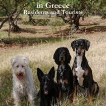 A Guide for Pet Owners in Greece