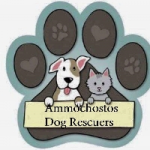 Ammachostos Dog Rescue