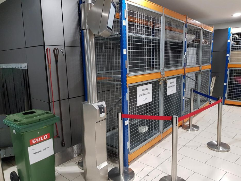 Larnaka Airport Pet Travel Holding Area
