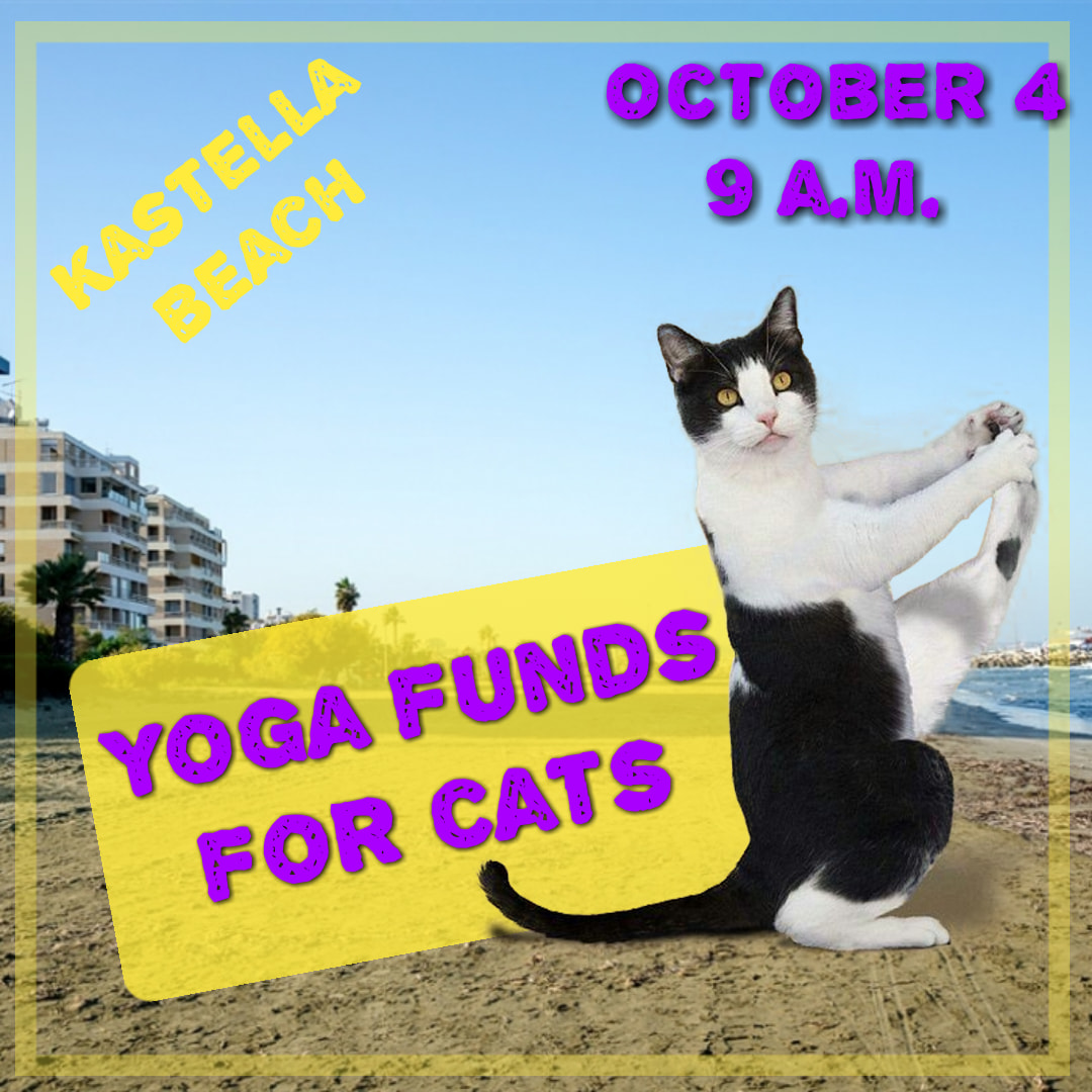 Friends of Larnaca Cats Funds for Cats